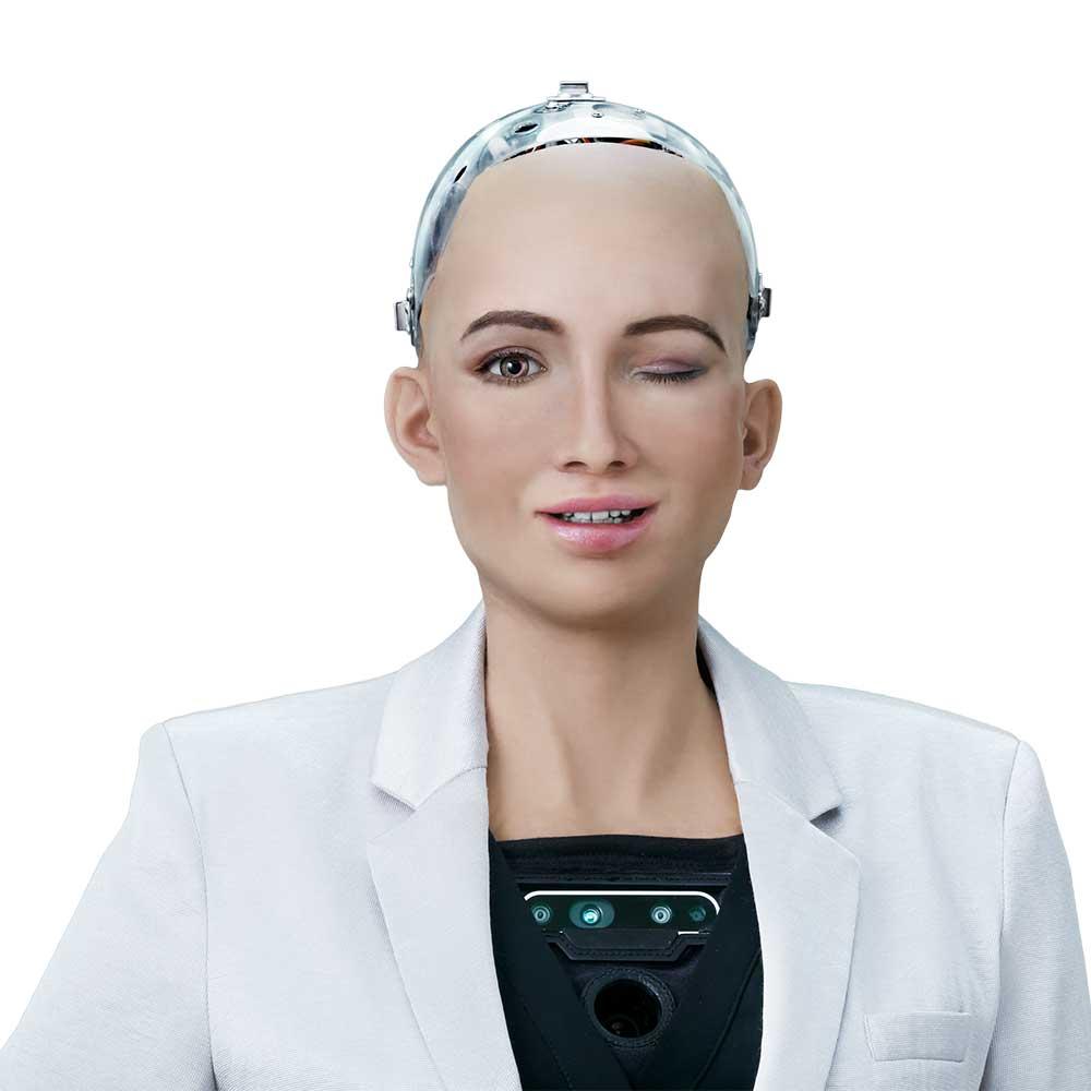 sophia robot my blind bird