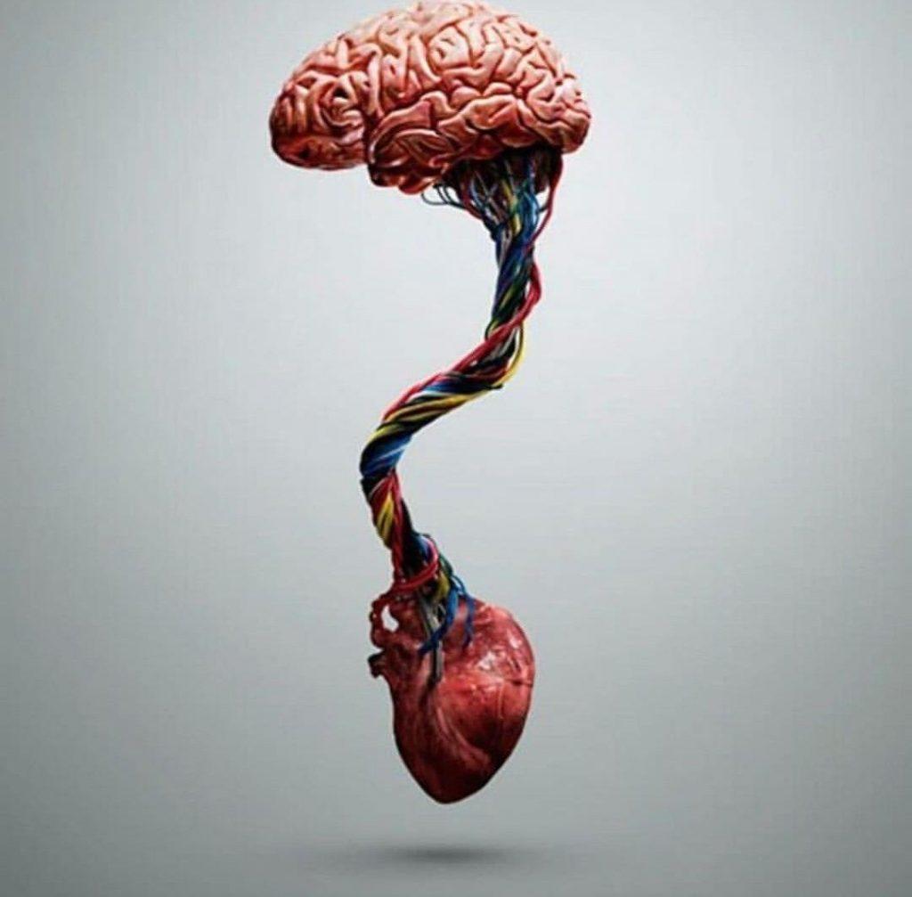 Harmonize heart and brain