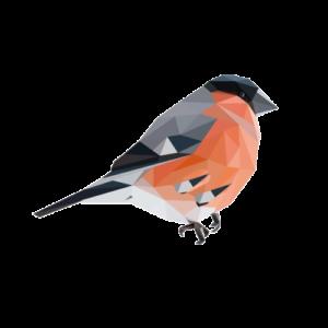 My Blind bird